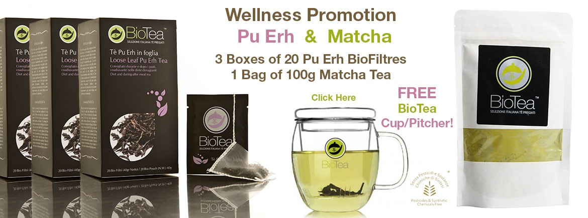 Wellness Promotion Puerh Matcha